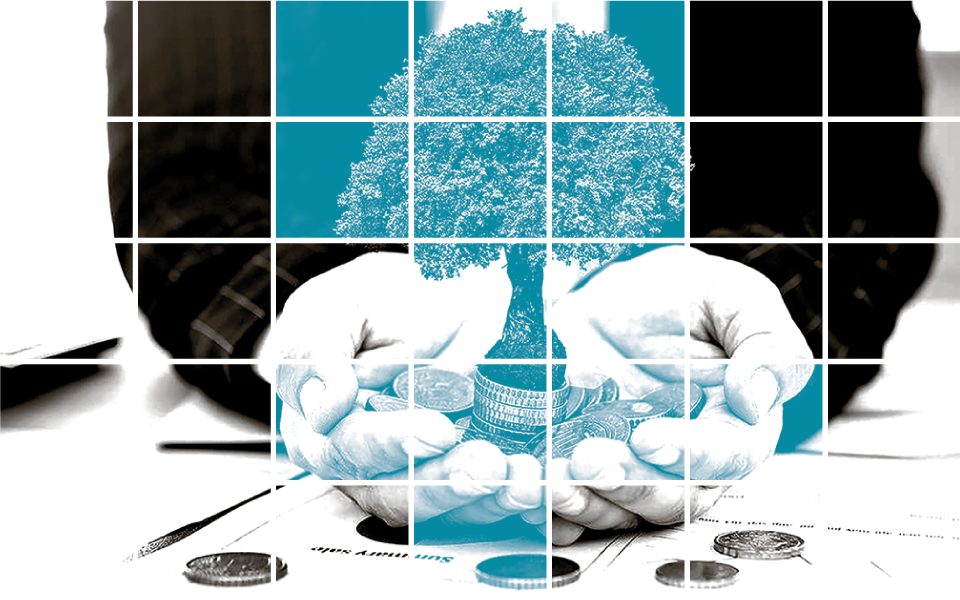 """A ascensão dos mercados financeiros """"bonsai"""""""