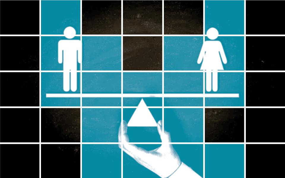 Desigualdade  de género condiciona  crescimento económico