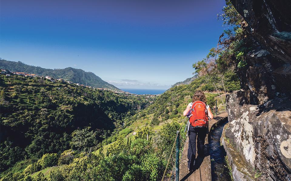 AP Madeira mantém foco nos principais mercados