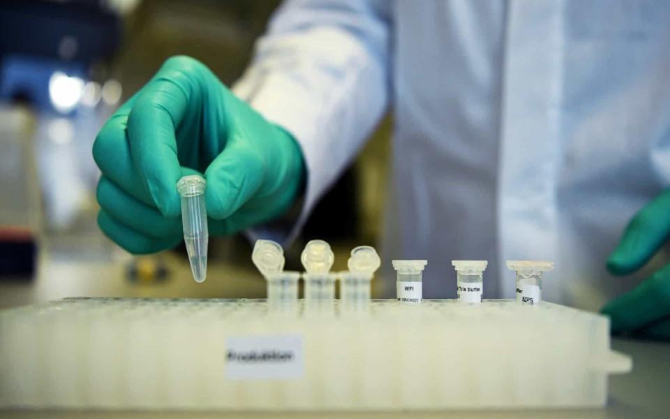 Raul Vieira aposta em biorreguladores