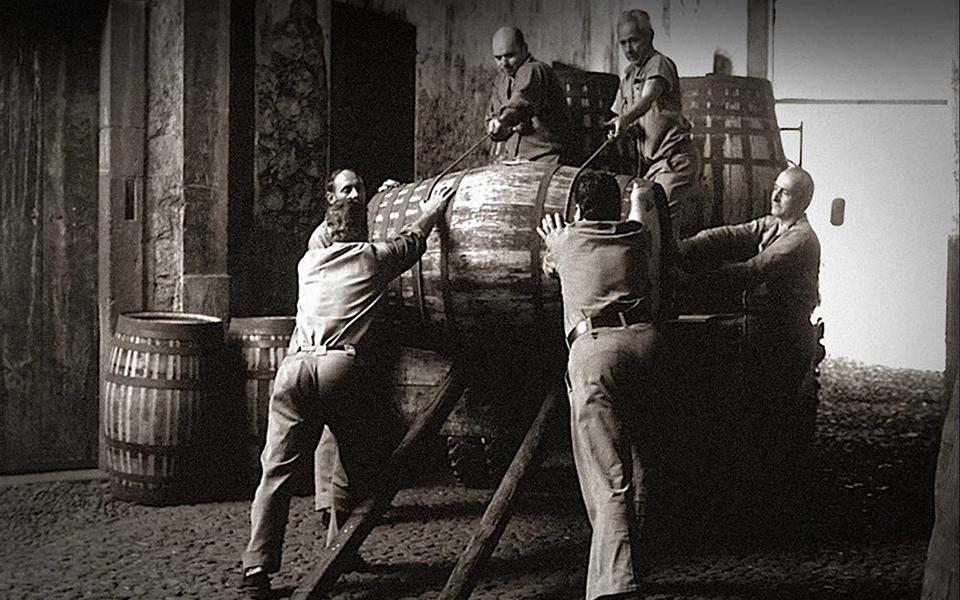 Madeira Wine Company mergulha na ciência  para aprimorar Vinho da Madeira