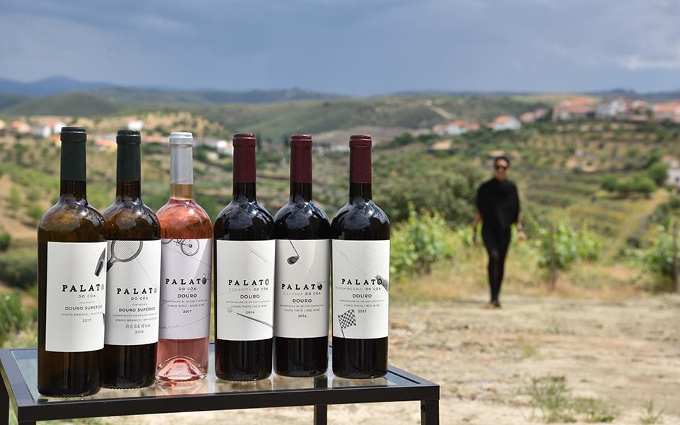 Foz Côa: Festival do Vinho do Douro Superior chega à 8.ª edição