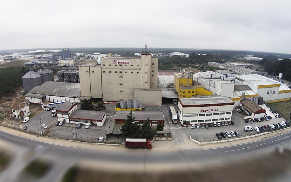 Grupo Soja de Portugal quer atingir 40% de exportações em 2022