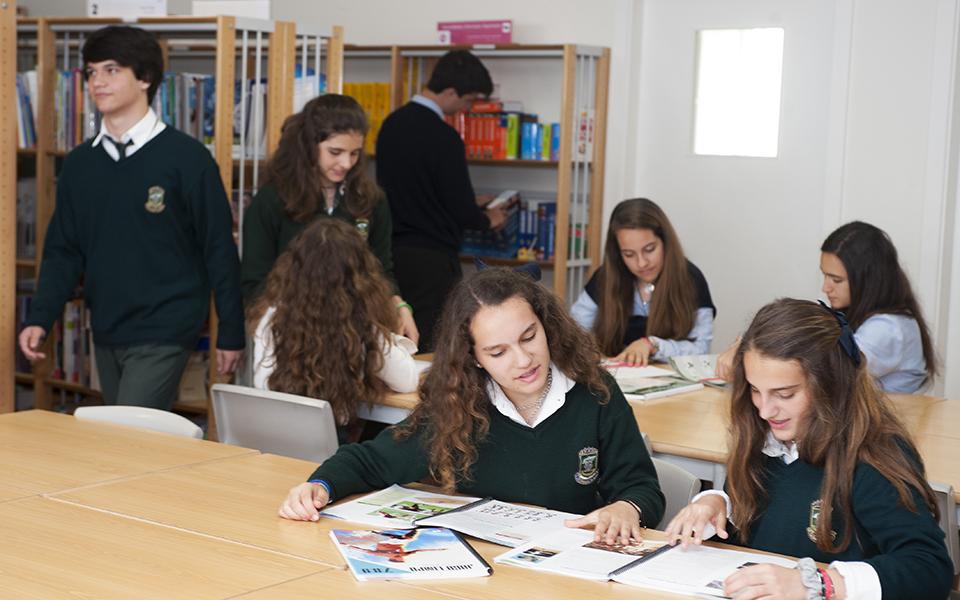 Engenharias  e Gestão lideram escolha  dos alunos  de St. Peter's