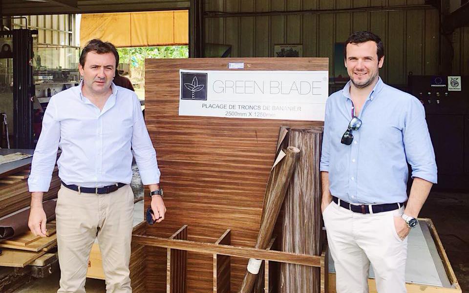 Behogitor quer dar novo uso ao tronco da bananeira e prevê instalar fábrica na Madeira em 2019