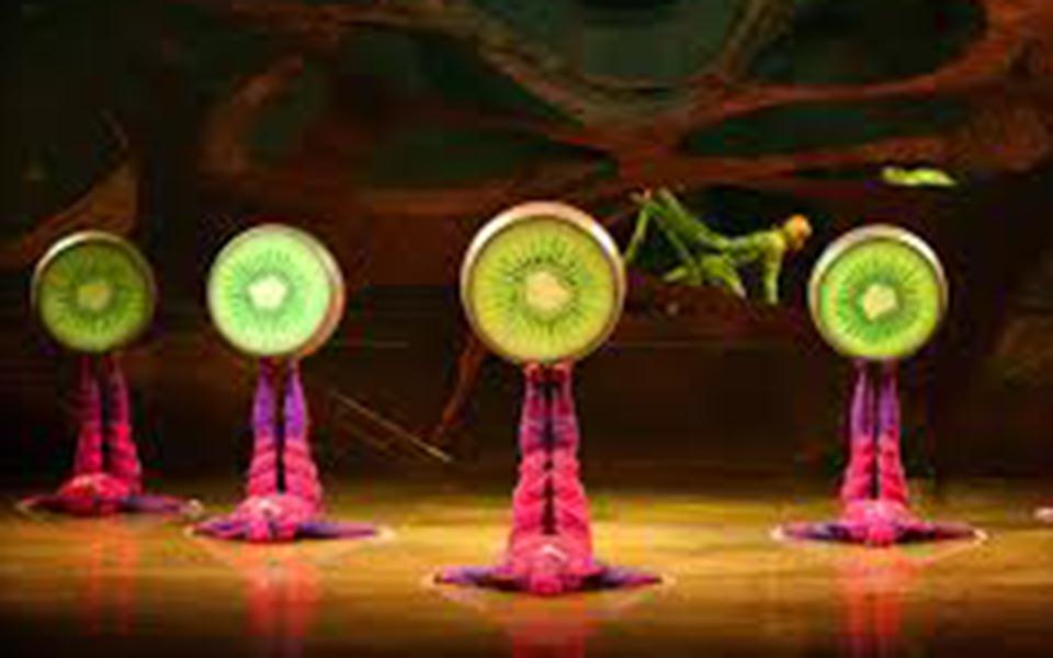"""Cirque du Soleil  """"Ovo""""  ou os ciclos  da vida a cores"""