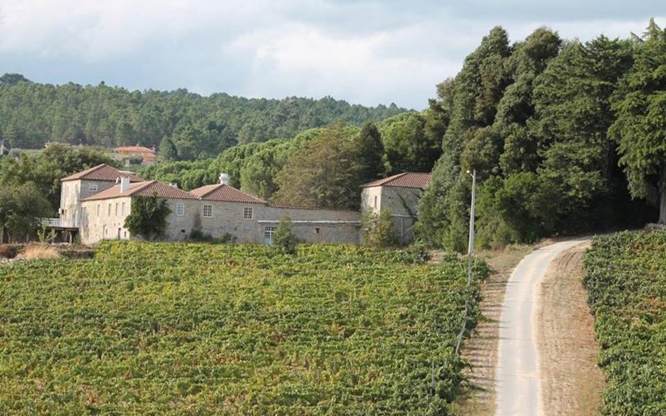 Quinta da taboadella, dão Grupo Amorim prevê produzir 1,2 milhões de garrafas