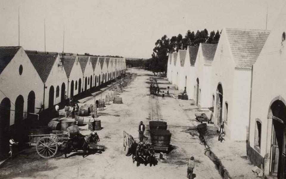 Um projeto agrícola que remonta ao século XVIII