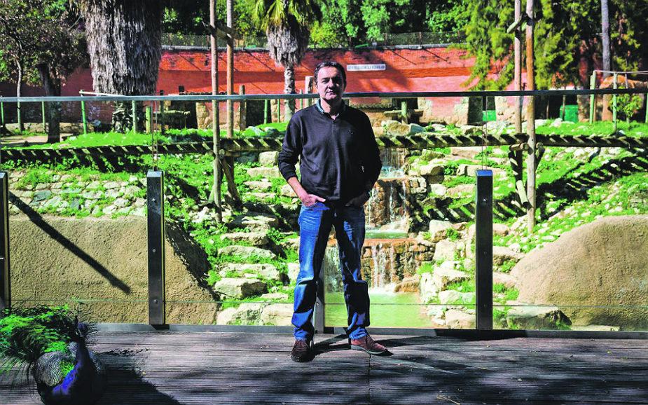 """Luis Freitas Lobo: A emoção no futebol e a coragem na vida do """"vendedor de sonhos"""""""