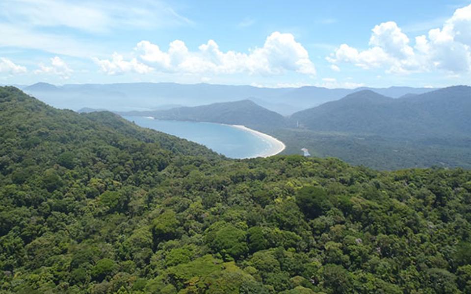 A recuperação de ecossistemas salva vidas
