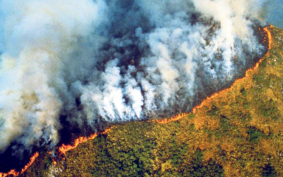 Amazónia continua a arder: mais de 70 mil incêndios em 2019
