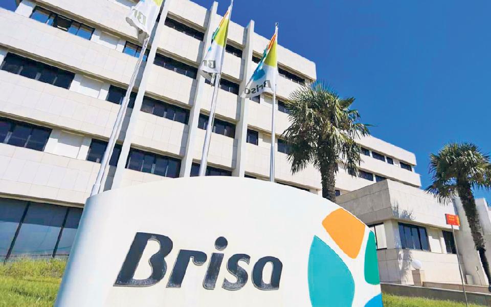 Brisa espera propostas vinculativas até 8 de abril