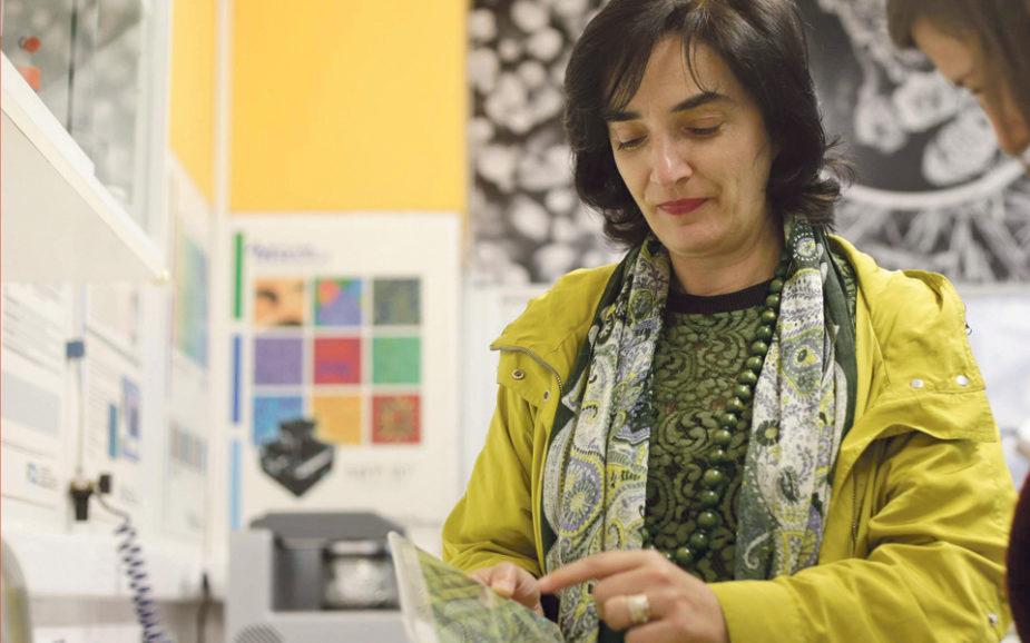 """Elvira Fortunato: """"O supermercado é uma excelente fonte de ideias para investigação"""""""