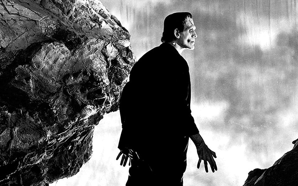 Ecologia do tempo para  um tempo de Frankensteins