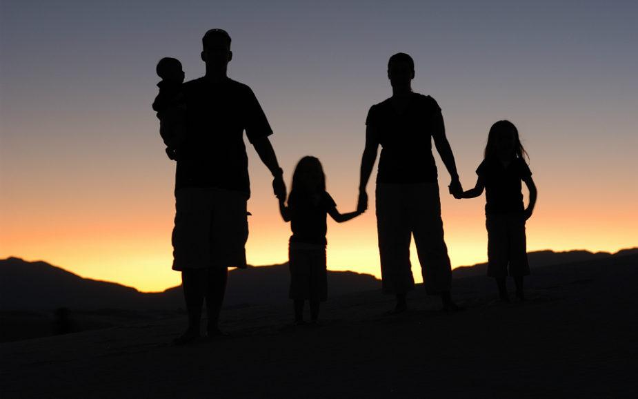 Saiba como vai ser o ano de 2017 para a carteira das famílias