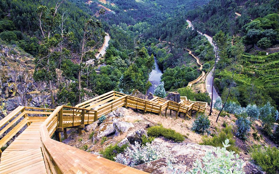 Carmo Wood prevê faturar 100 milhões