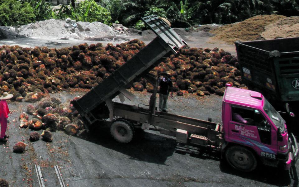 Garcia, Garcia cresce sustentada no setor logístico