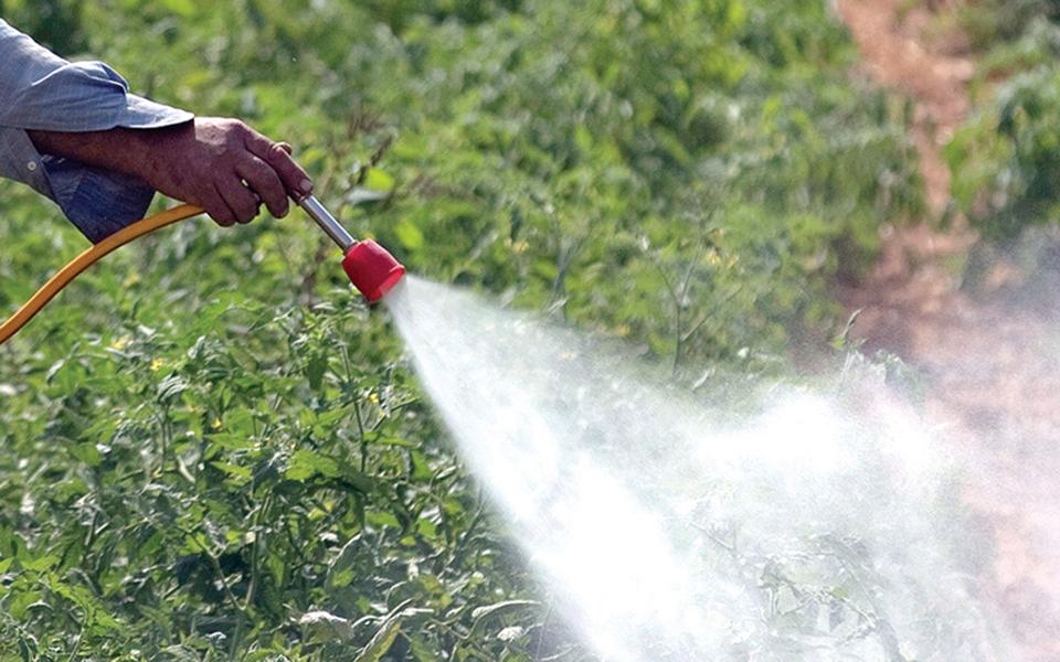 Proibição de pesticidas pode custar 810 milhões ao setor