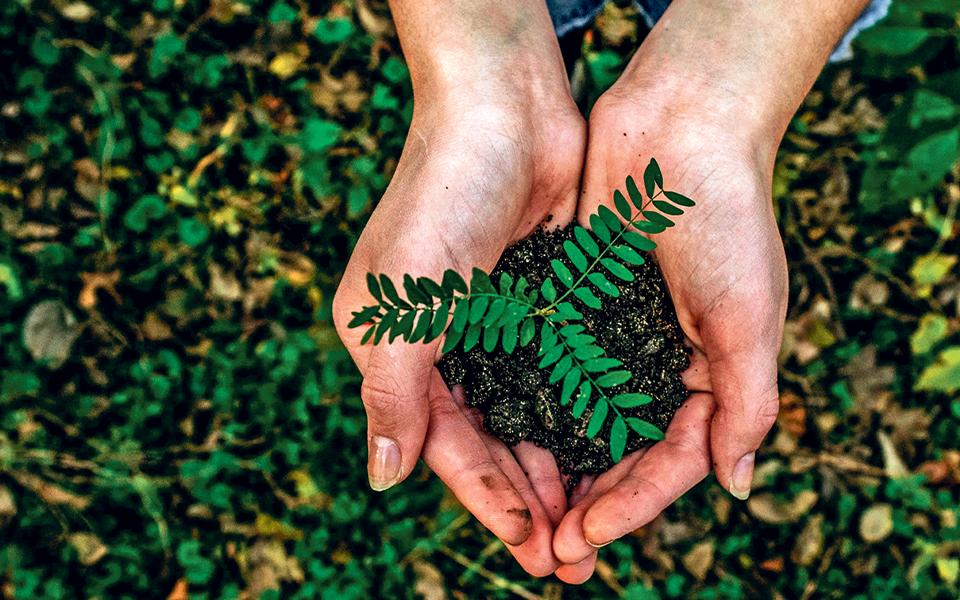 De que forma a sustentabilidade é decisiva para o desenvolvimento económico nacional?