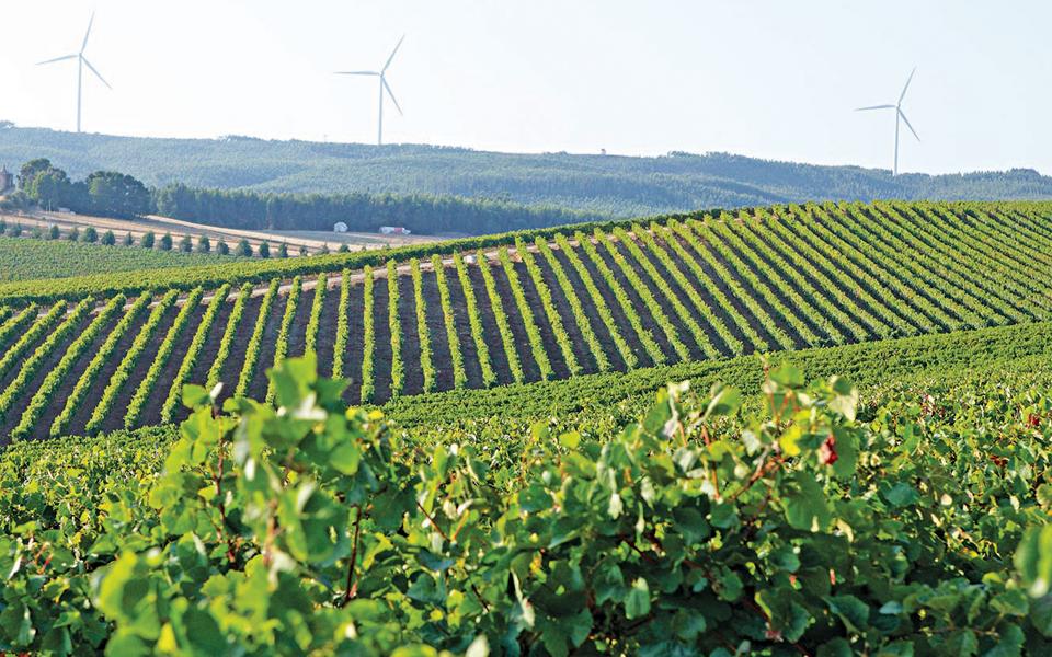 Vendas da região de Lisboa crescem 20% até ao final de setembro